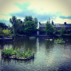 Lifeline Podcast: Interview with Dublin City Council employee Austin Dillon about his role installing Floating Ecosystems to solve pollution (eutrophication) in Blessington Basin Dublin 7