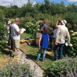 Bí URBAN Bee Stewardship Workshop Series - Session 6 Gardening for Pollinators and Natural Beekeeping with Tanguy de Toulgeot
