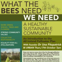 Bí URBAN's 2020 Equality for All Pollinators Campaign: Stoneybatter declared Ireland's first Pollinator Friendly Community by the National Biodiversity Data Centre